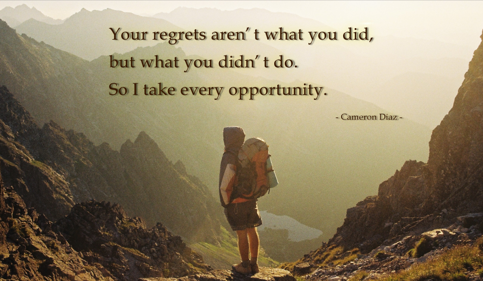 Your regrets aren't what you did, but what you didn't do. So I take every opportunity.-Cameron Michelle Diaz-
