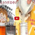 ヨウ素液吸着実験動画