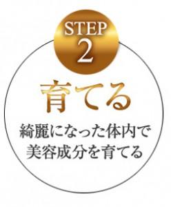 Step2 育てる