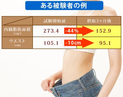 難消化性デキストリンによる内臓脂肪面積の低減2
