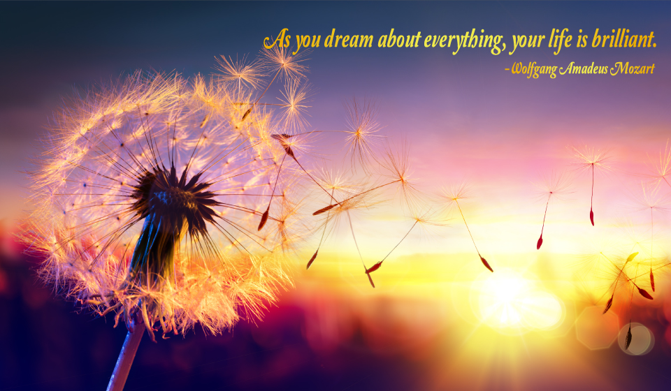 As you dream about everything, your life is brilliant. -Wolfgang Amadeus Mozart